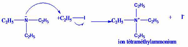 reaction d hofmann