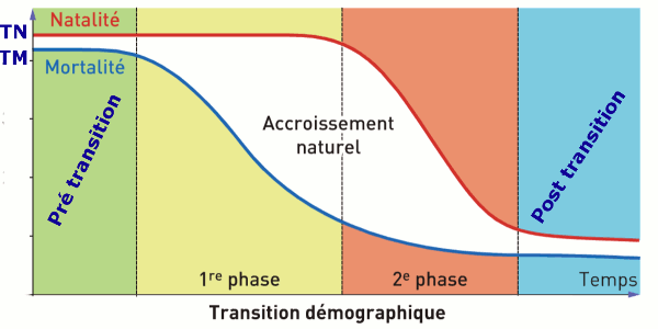 transition demographique